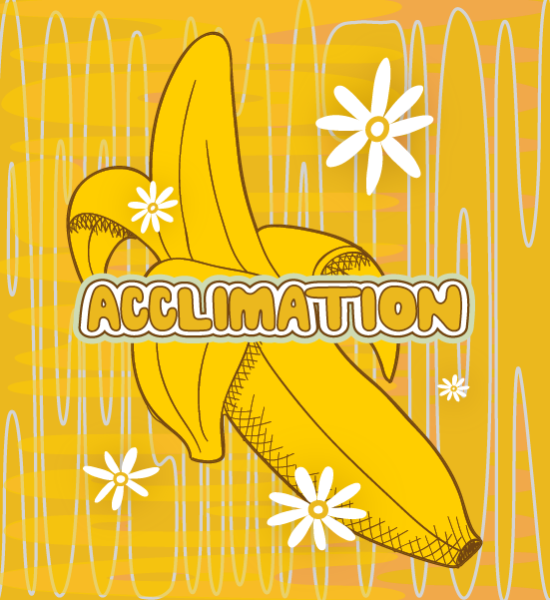 Bnanas acclimation 550x600-04