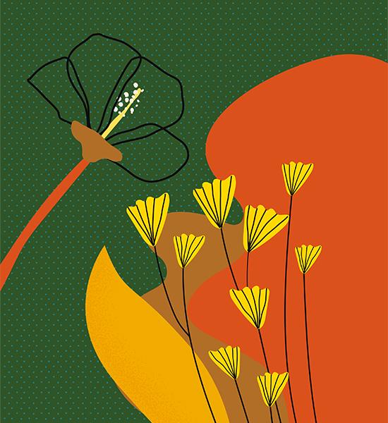 floral 550x600